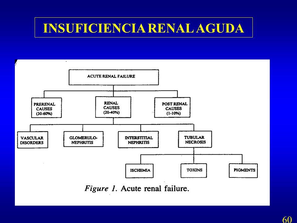 INSUFICIENCIA RENAL AGUDA 60