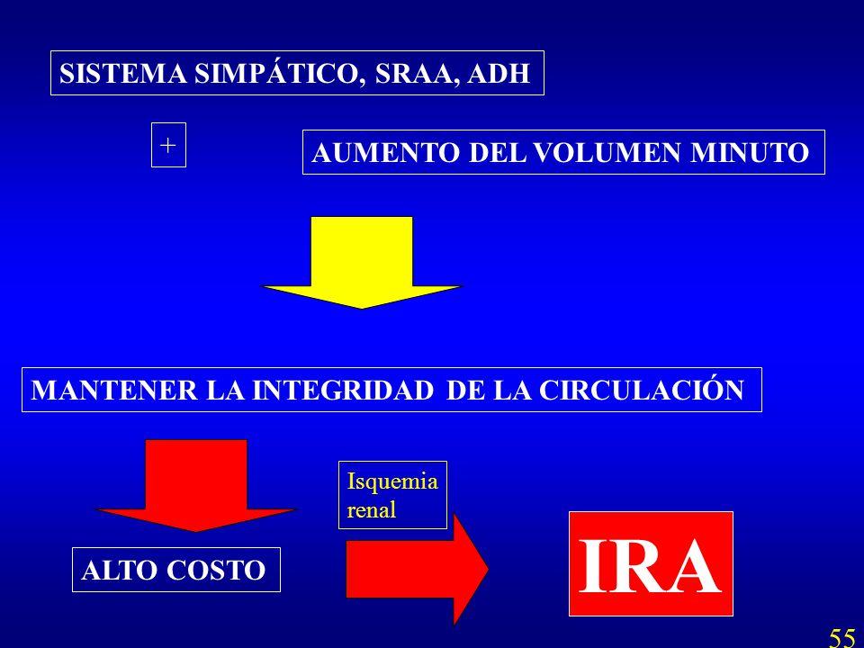 AUMENTO DEL VOLUMEN MINUTO + MANTENER LA INTEGRIDAD DE LA CIRCULACIÓN ALTO COSTO IRA Isquemia renal 55