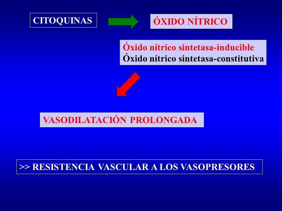 VASODILATACIÓN PROLONGADA CITOQUINAS ÓXIDO NÍTRICO Óxido nítrico sintetasa-inducible Óxido nítrico sintetasa-constitutiva >> RESISTENCIA VASCULAR A LO