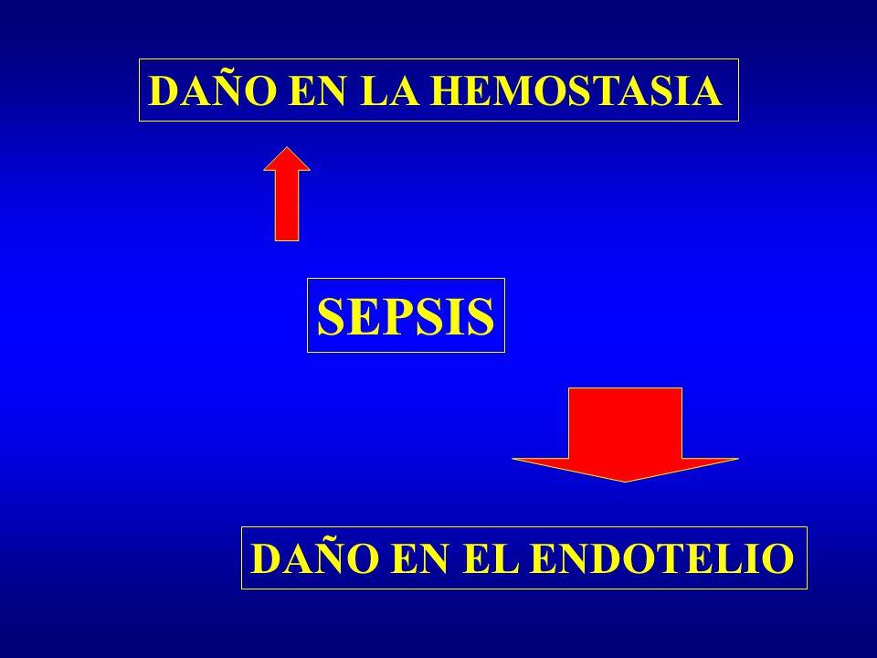 DAÑO EN LA HEMOSTASIA DAÑO EN EL ENDOTELIO SEPSIS