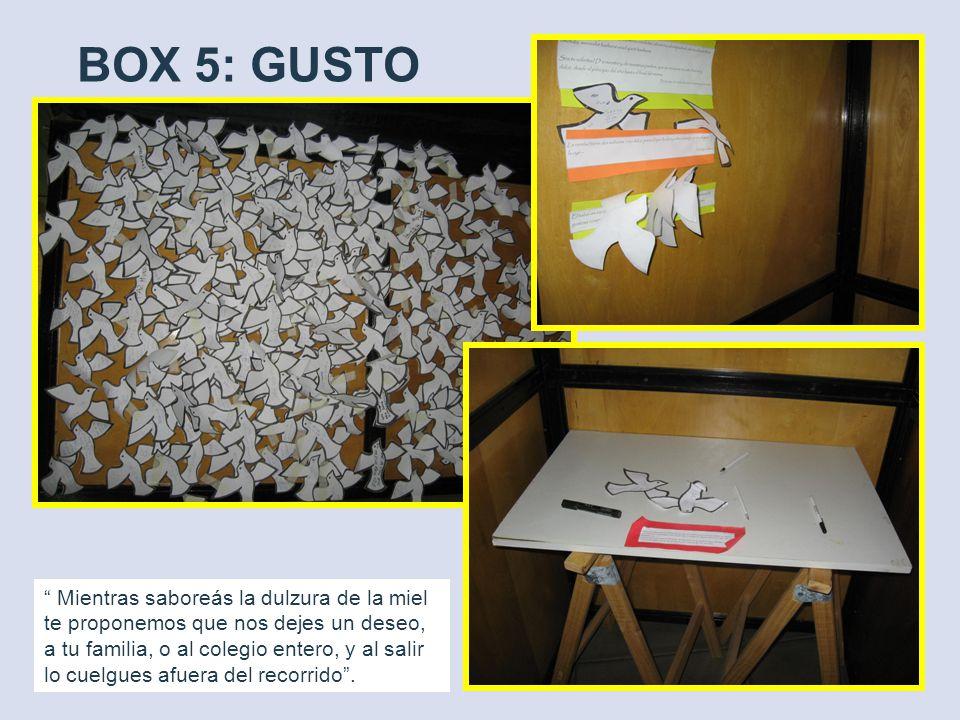 BOX 5: GUSTO Mientras saboreás la dulzura de la miel te proponemos que nos dejes un deseo, a tu familia, o al colegio entero, y al salir lo cuelgues afuera del recorrido.