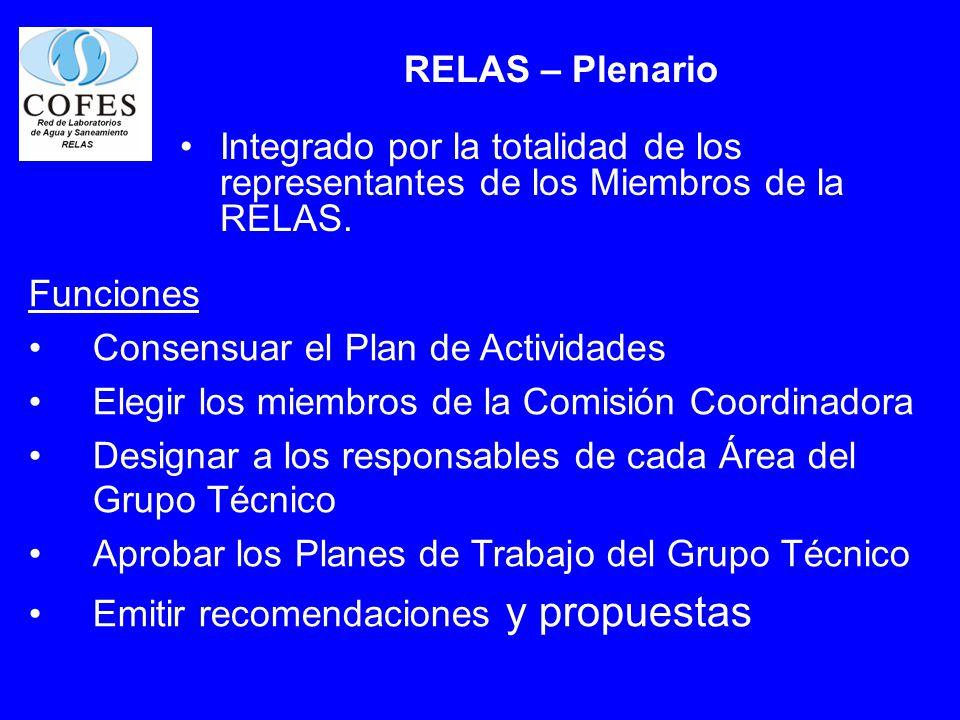 RELAS – Plenario Integrado por la totalidad de los representantes de los Miembros de la RELAS. Funciones Consensuar el Plan de Actividades Elegir los