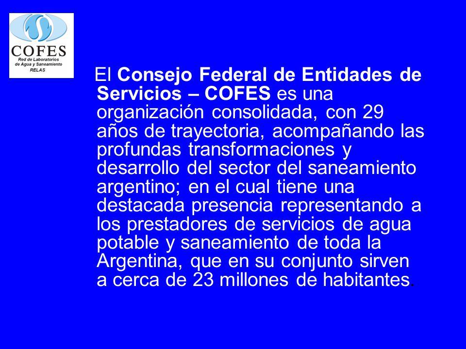 El Consejo Federal de Entidades de Servicios – COFES es una organización consolidada, con 29 años de trayectoria, acompañando las profundas transforma
