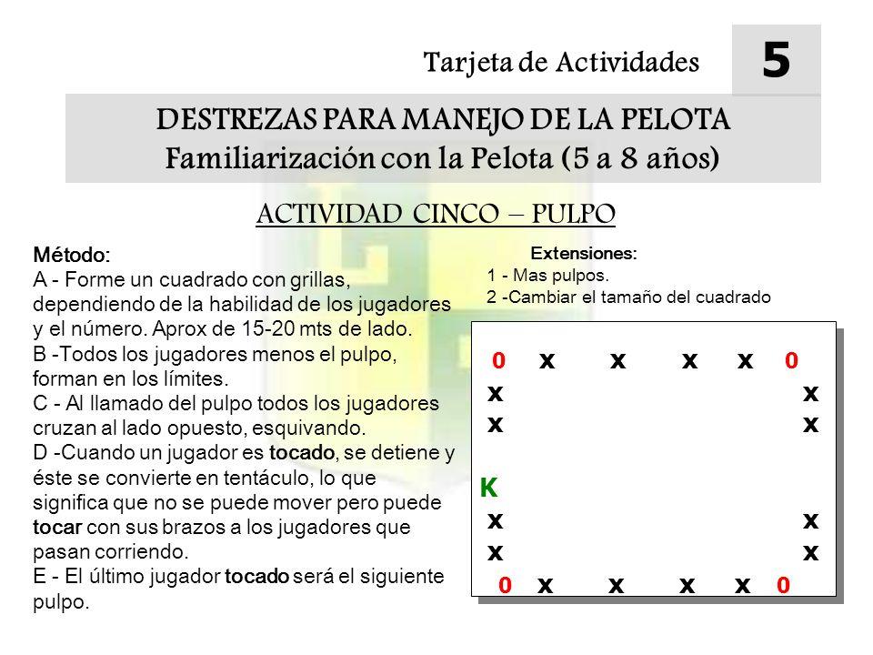 Tarjeta de Actividades 5 DESTREZAS PARA MANEJO DE LA PELOTA Familiarización con la Pelota (5 a 8 años) ACTIVIDAD CINCO – PULPO Método: A - Forme un cuadrado con grillas, dependiendo de la habilidad de los jugadores y el número.