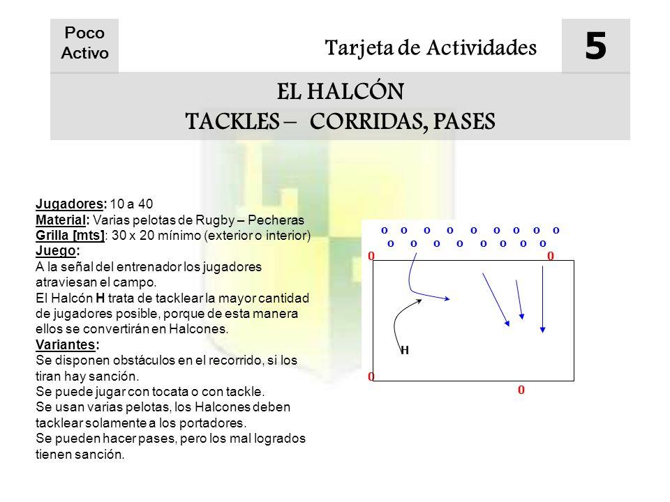 Tarjeta de Actividades 5 EL HALCÓN TACKLES – CORRIDAS, PASES Poco Activo Jugadores: 10 a 40 Material: Varias pelotas de Rugby – Pecheras Grilla [mts]: