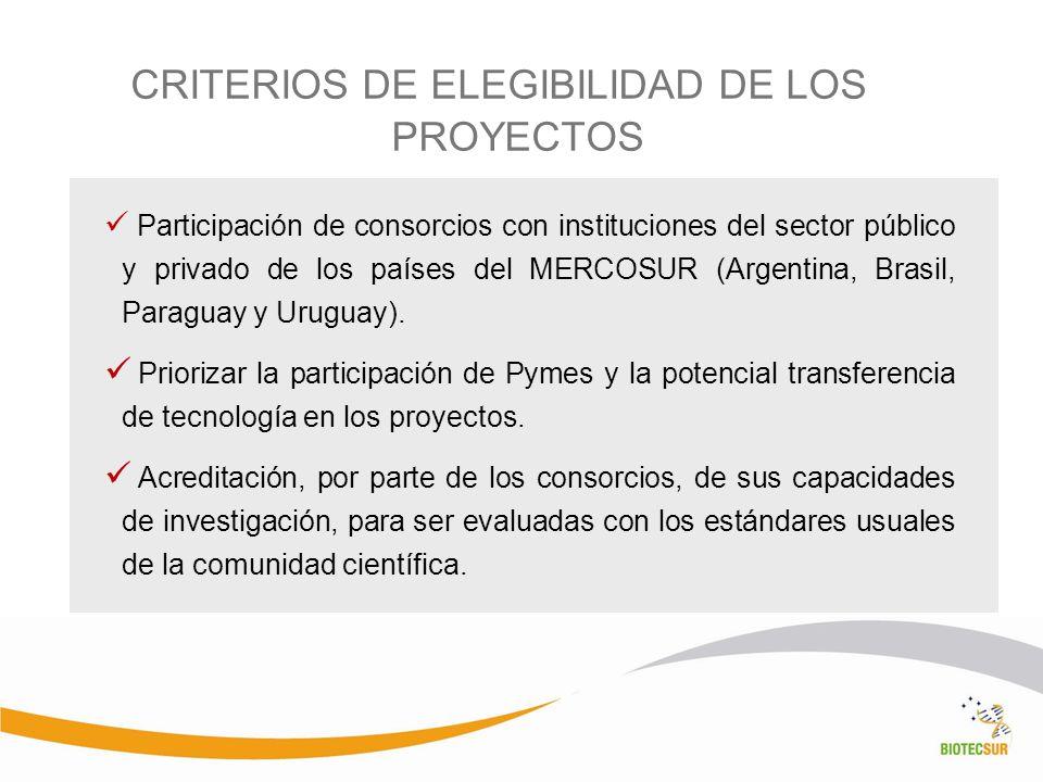 CRITERIOS DE ELEGIBILIDAD DE LOS PROYECTOS Participación de consorcios con instituciones del sector público y privado de los países del MERCOSUR (Arge