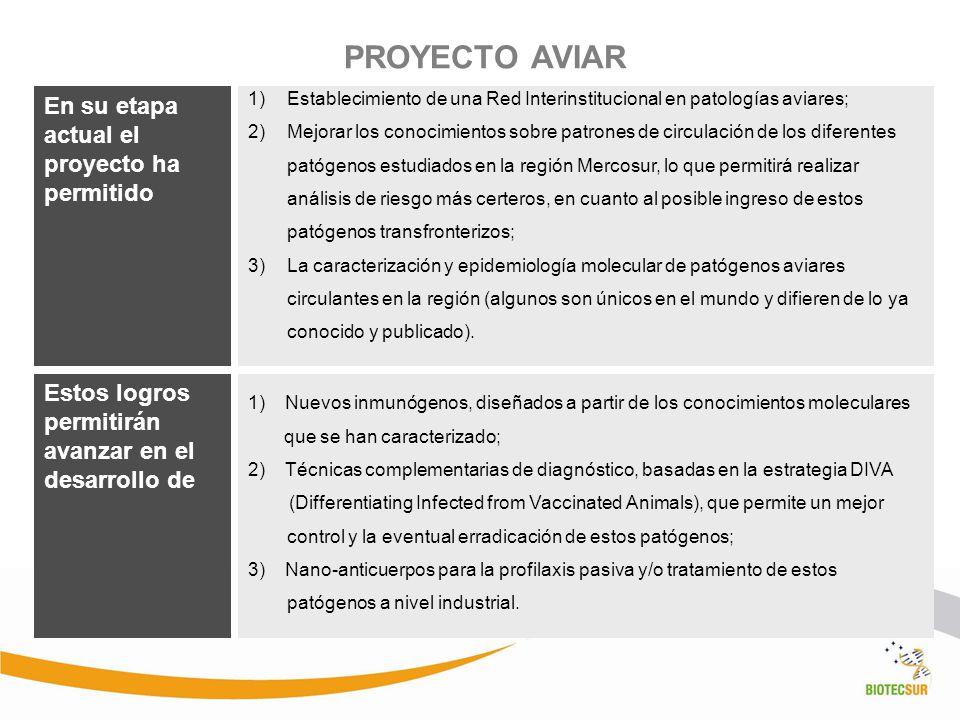PROYECTO AVIAR 1)Establecimiento de una Red Interinstitucional en patologías aviares; 2)Mejorar los conocimientos sobre patrones de circulación de los