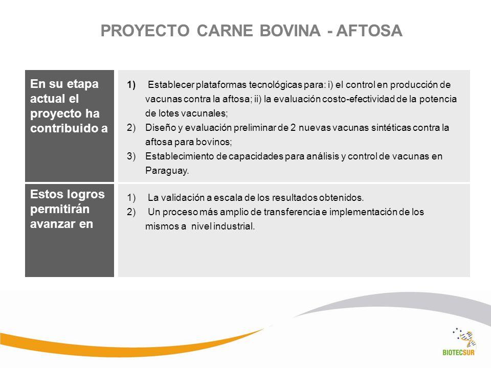 PROYECTO CARNE BOVINA - AFTOSA En su etapa actual el proyecto ha contribuido a La validación a escala de los resultados obtenidos. Un proceso más ampl