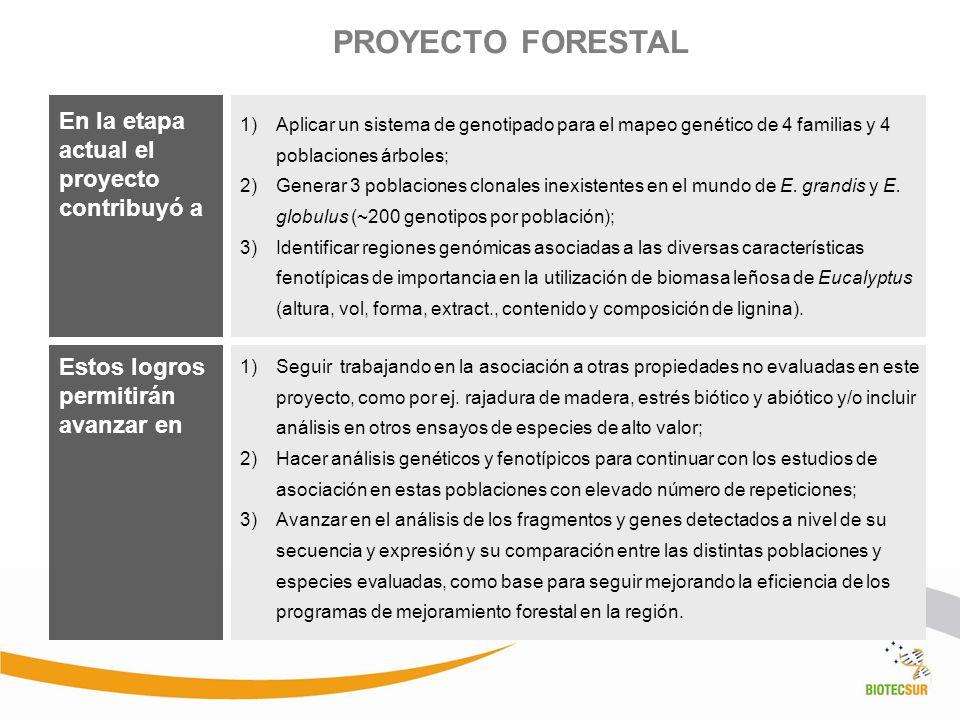 PROYECTO FORESTAL 1)Aplicar un sistema de genotipado para el mapeo genético de 4 familias y 4 poblaciones árboles; 2)Generar 3 poblaciones clonales in