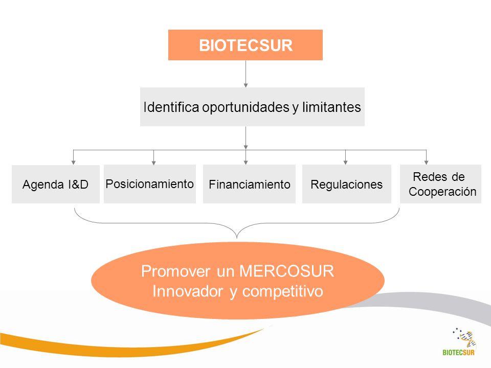 BIOTECSUR Identifica oportunidades y limitantes Agenda I&D FinanciamientoRegulaciones Redes de Cooperación Promover un MERCOSUR Innovador y competitiv