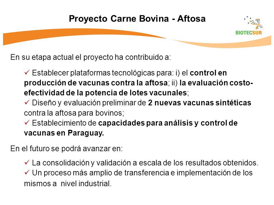 Proyecto Carne Bovina - Aftosa En su etapa actual el proyecto ha contribuido a: Establecer plataformas tecnológicas para: i) el control en producción de vacunas contra la aftosa; ii) la evaluación costo- efectividad de la potencia de lotes vacunales; Diseño y evaluación preliminar de 2 nuevas vacunas sintéticas contra la aftosa para bovinos; Establecimiento de capacidades para análisis y control de vacunas en Paraguay.