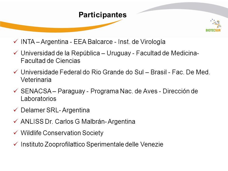 Participantes INTA – Argentina - EEA Balcarce - Inst. de Virología Universidad de la República – Uruguay - Facultad de Medicina- Facultad de Ciencias