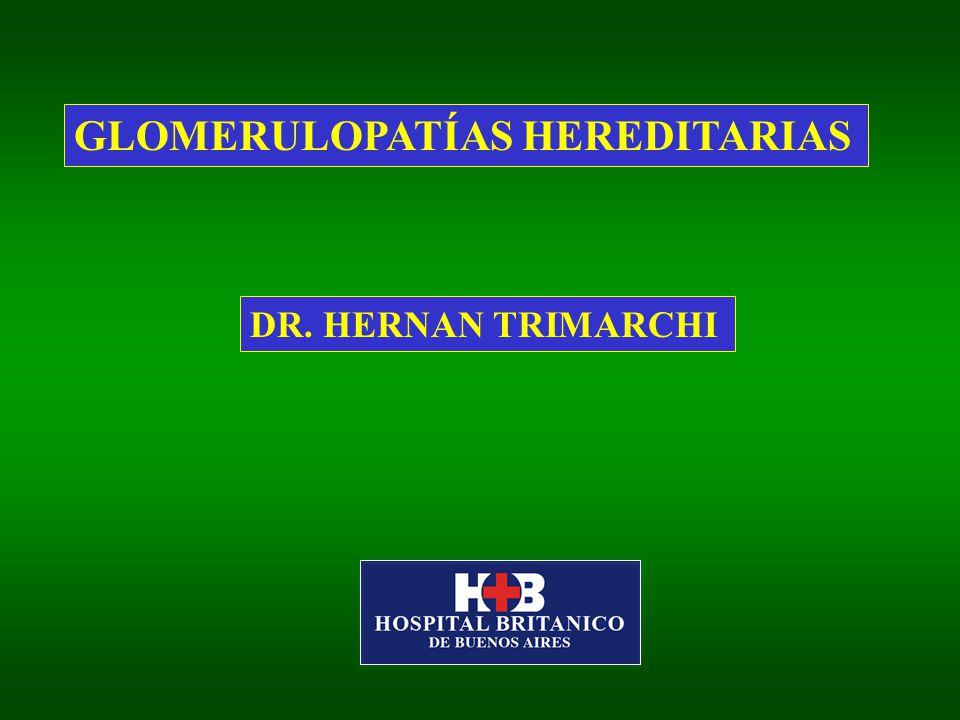 GLOMERULOPATÍAS HEREDITARIAS DR. HERNAN TRIMARCHI