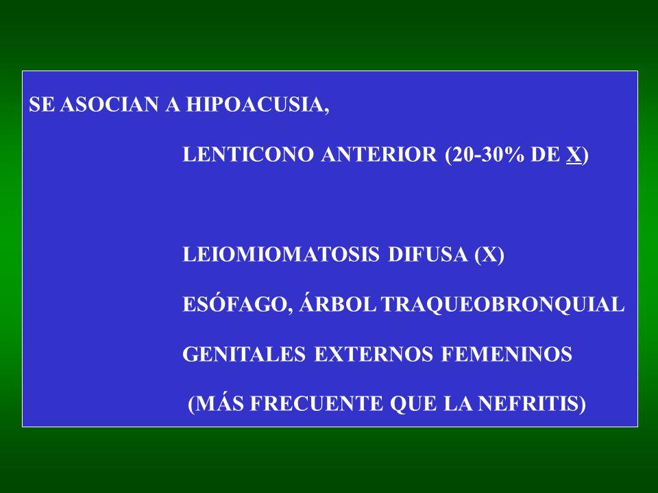 SE ASOCIAN A HIPOACUSIA, LENTICONO ANTERIOR (20-30% DE X) LEIOMIOMATOSIS DIFUSA (X) ESÓFAGO, ÁRBOL TRAQUEOBRONQUIAL GENITALES EXTERNOS FEMENINOS (MÁS FRECUENTE QUE LA NEFRITIS)