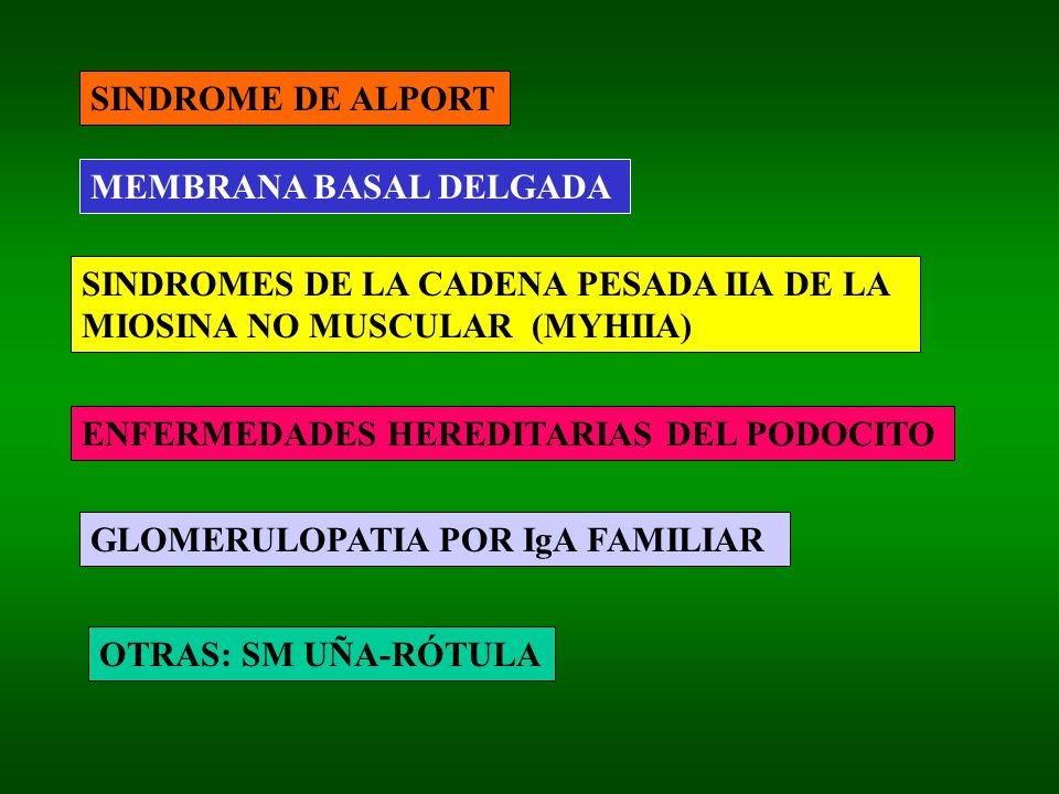 SINDROME DE ALPORT MEMBRANA BASAL DELGADA SINDROMES DE LA CADENA PESADA IIA DE LA MIOSINA NO MUSCULAR (MYHIIA) ENFERMEDADES HEREDITARIAS DEL PODOCITO GLOMERULOPATIA POR IgA FAMILIAR OTRAS: SM UÑA-RÓTULA