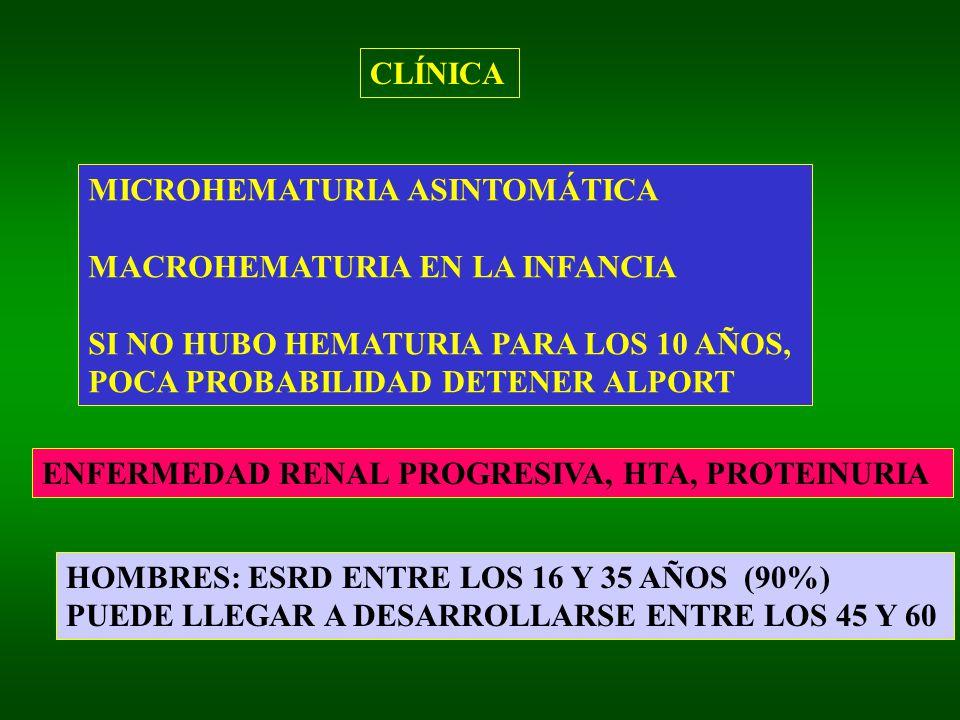 CLÍNICA MICROHEMATURIA ASINTOMÁTICA MACROHEMATURIA EN LA INFANCIA SI NO HUBO HEMATURIA PARA LOS 10 AÑOS, POCA PROBABILIDAD DETENER ALPORT ENFERMEDAD RENAL PROGRESIVA, HTA, PROTEINURIA HOMBRES: ESRD ENTRE LOS 16 Y 35 AÑOS (90%) PUEDE LLEGAR A DESARROLLARSE ENTRE LOS 45 Y 60