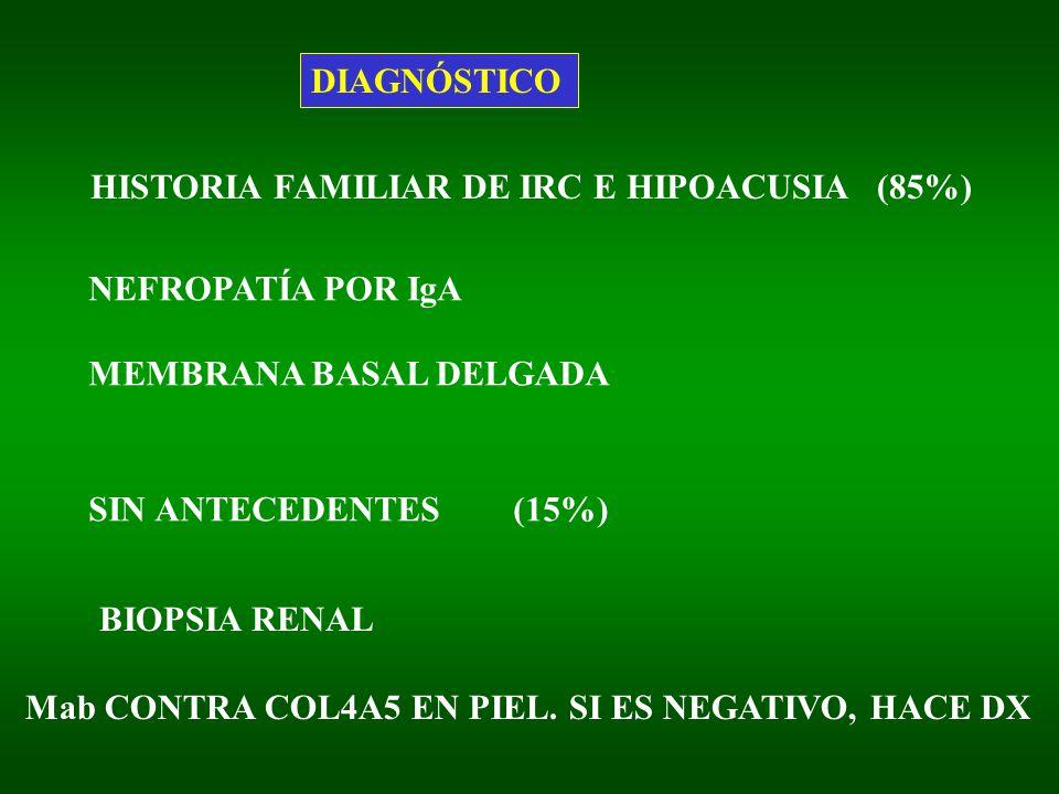 DIAGNÓSTICO HISTORIA FAMILIAR DE IRC E HIPOACUSIA (85%) NEFROPATÍA POR IgA MEMBRANA BASAL DELGADA SIN ANTECEDENTES (15%) BIOPSIA RENAL Mab CONTRA COL4A5 EN PIEL.