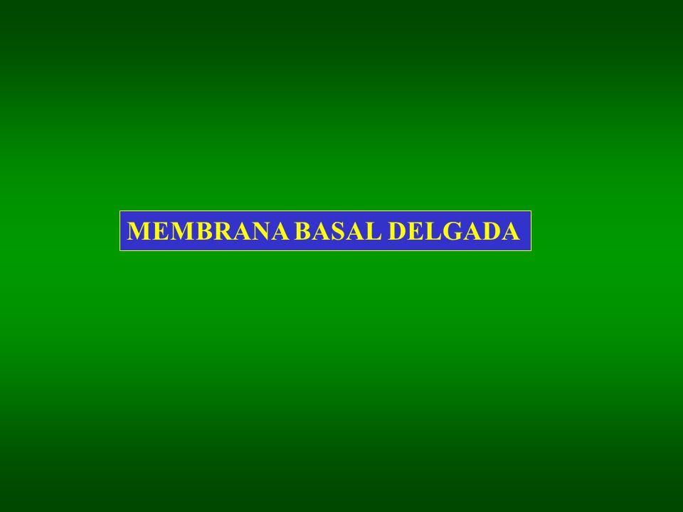 MEMBRANA BASAL DELGADA