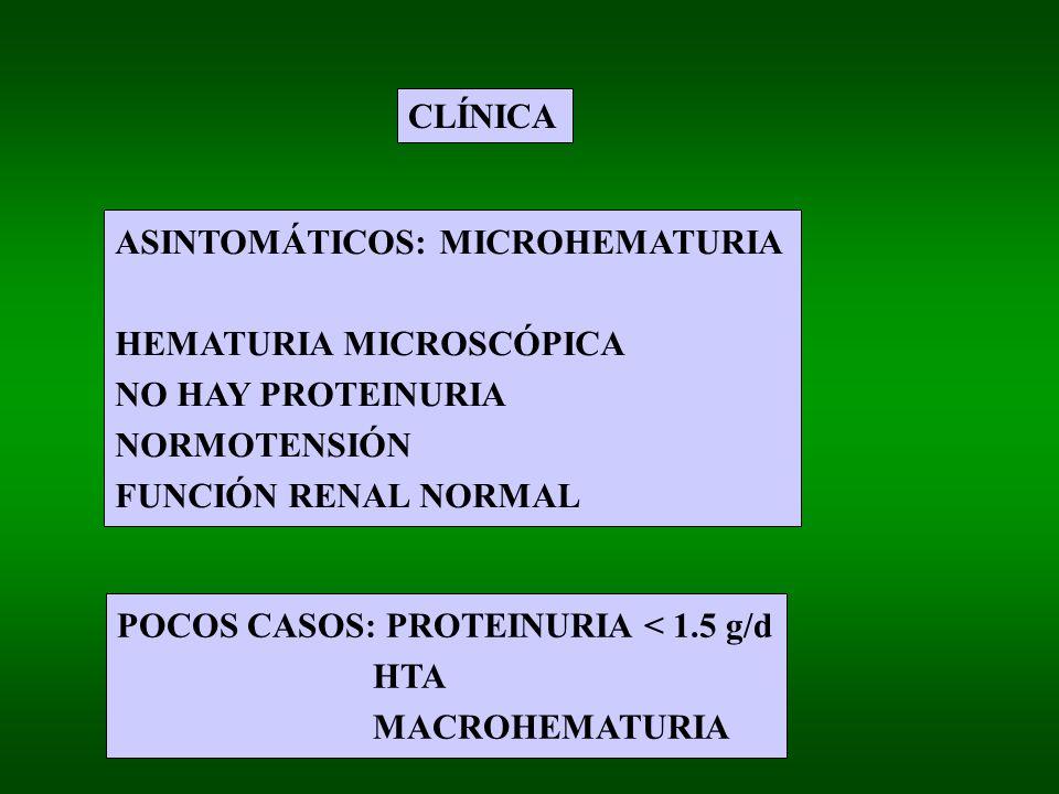 CLÍNICA ASINTOMÁTICOS: MICROHEMATURIA HEMATURIA MICROSCÓPICA NO HAY PROTEINURIA NORMOTENSIÓN FUNCIÓN RENAL NORMAL POCOS CASOS: PROTEINURIA < 1.5 g/d HTA MACROHEMATURIA