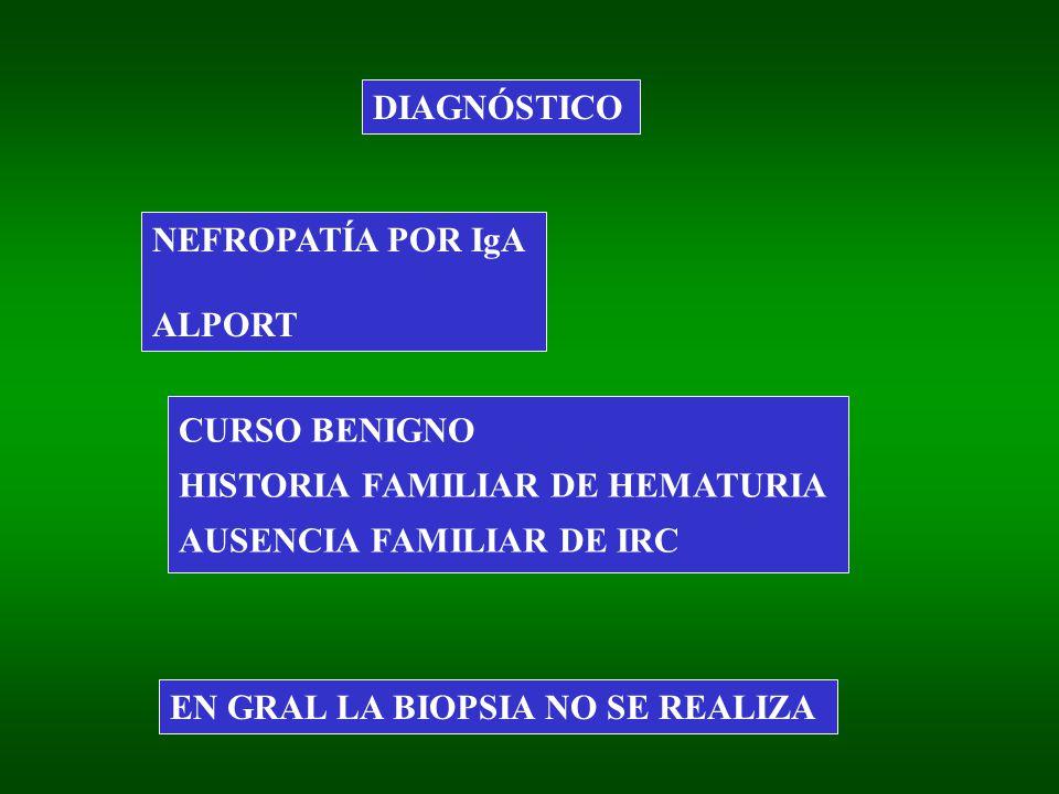 DIAGNÓSTICO NEFROPATÍA POR IgA ALPORT CURSO BENIGNO HISTORIA FAMILIAR DE HEMATURIA AUSENCIA FAMILIAR DE IRC EN GRAL LA BIOPSIA NO SE REALIZA