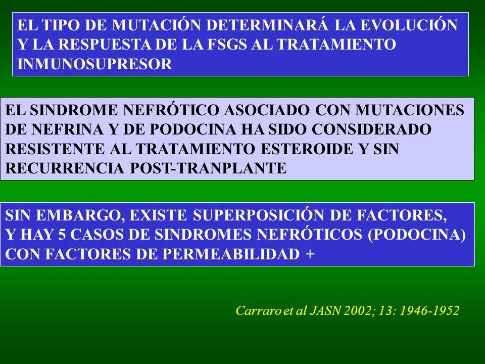 EL TIPO DE MUTACIÓN DETERMINARÁ LA EVOLUCIÓN Y LA RESPUESTA DE LA FSGS AL TRATAMIENTO INMUNOSUPRESOR EL SINDROME NEFRÓTICO ASOCIADO CON MUTACIONES DE