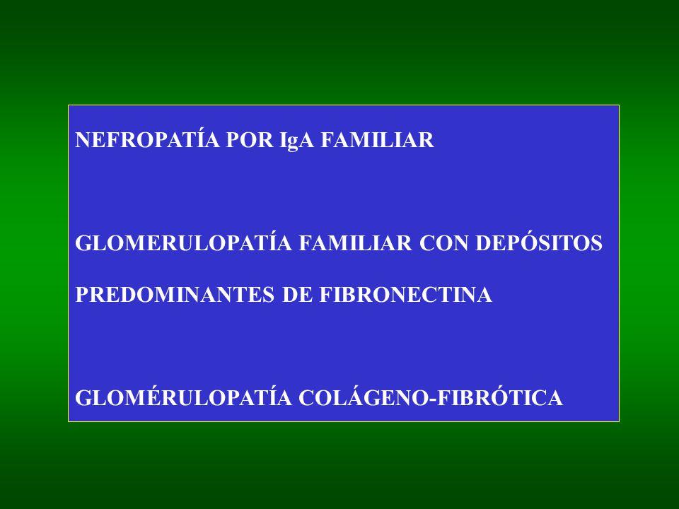 NEFROPATÍA POR IgA FAMILIAR GLOMERULOPATÍA FAMILIAR CON DEPÓSITOS PREDOMINANTES DE FIBRONECTINA GLOMÉRULOPATÍA COLÁGENO-FIBRÓTICA