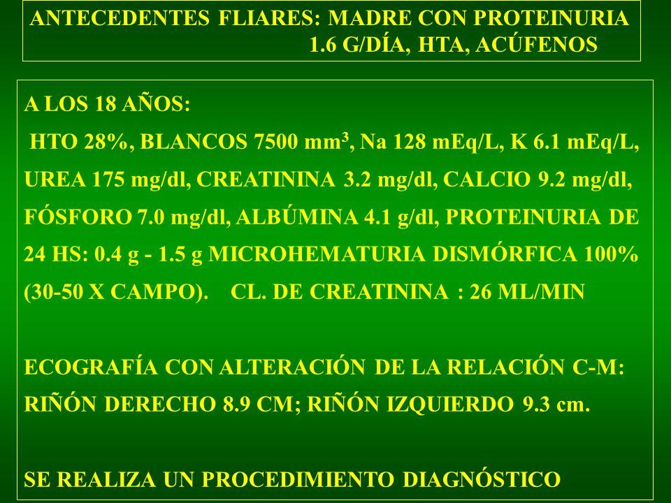 ANTECEDENTES FLIARES: MADRE CON PROTEINURIA 1.6 G/DÍA, HTA, ACÚFENOS A LOS 18 AÑOS: HTO 28%, BLANCOS 7500 mm 3, Na 128 mEq/L, K 6.1 mEq/L, UREA 175 mg/dl, CREATININA 3.2 mg/dl, CALCIO 9.2 mg/dl, FÓSFORO 7.0 mg/dl, ALBÚMINA 4.1 g/dl, PROTEINURIA DE 24 HS: 0.4 g - 1.5 g MICROHEMATURIA DISMÓRFICA 100% (30-50 X CAMPO).