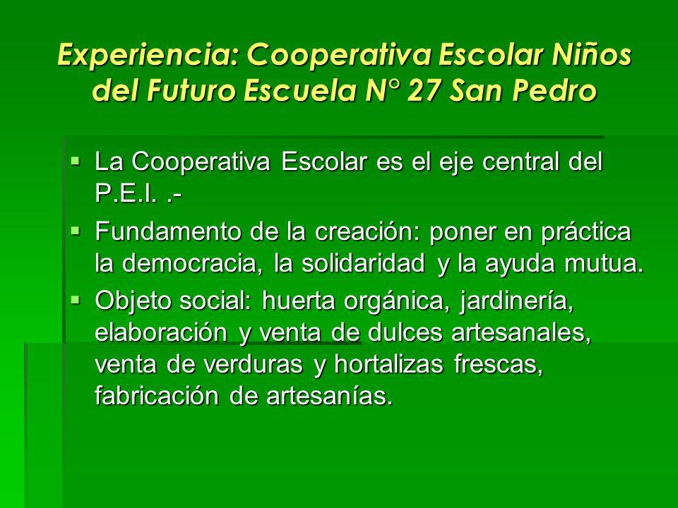 Experiencia: Cooperativa Escolar Niños del Futuro Escuela N° 27 San Pedro La Cooperativa Escolar es el eje central del P.E.I..- La Cooperativa Escolar