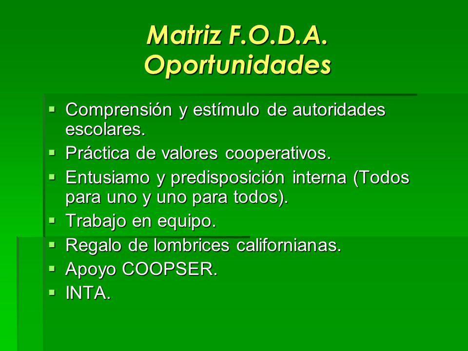 Matriz F.O.D.A. Oportunidades Comprensión y estímulo de autoridades escolares. Comprensión y estímulo de autoridades escolares. Práctica de valores co