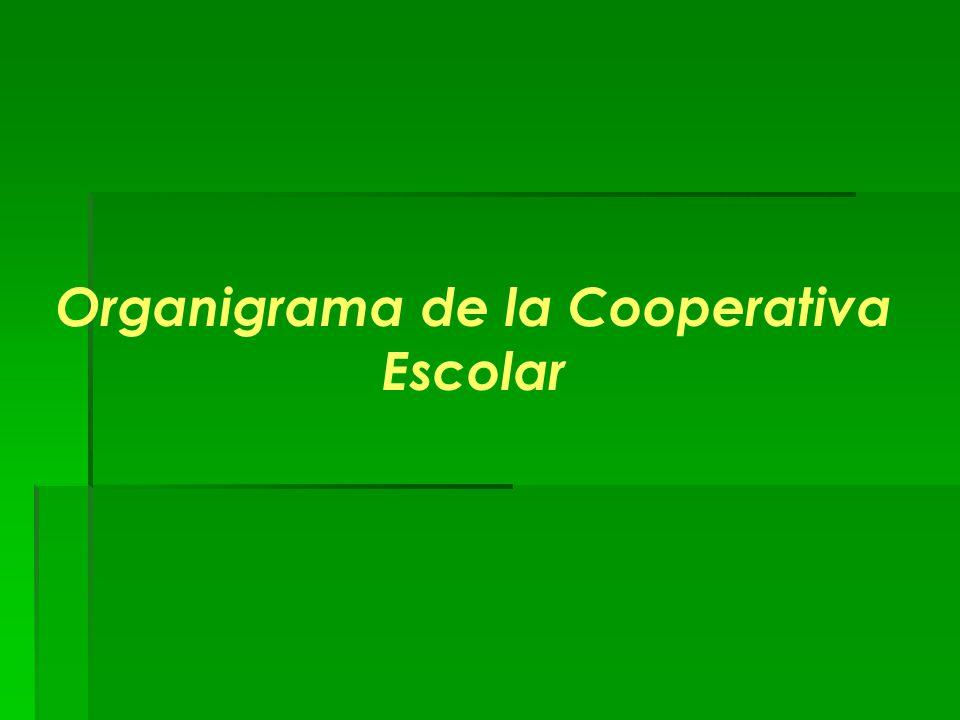 Organigrama de la Cooperativa Escolar