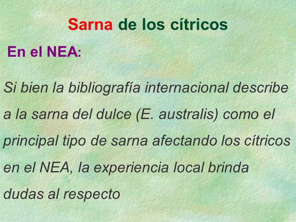 Sarna de los cítricos En el NEA : Si bien la bibliografía internacional describe a la sarna del dulce (E. australis) como el principal tipo de sarna a