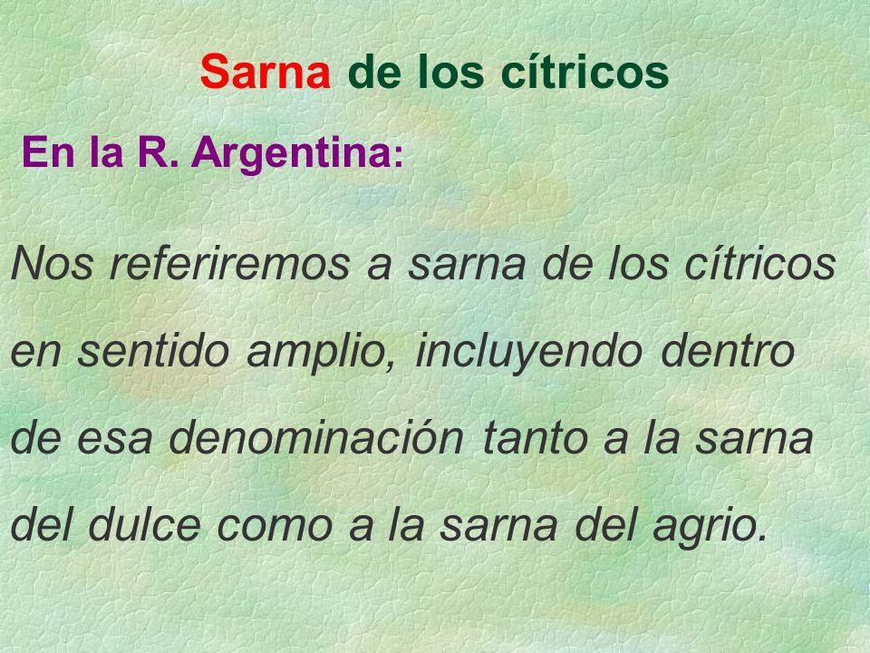 Sarna de los cítricos En la R. Argentina : Nos referiremos a sarna de los cítricos en sentido amplio, incluyendo dentro de esa denominación tanto a la