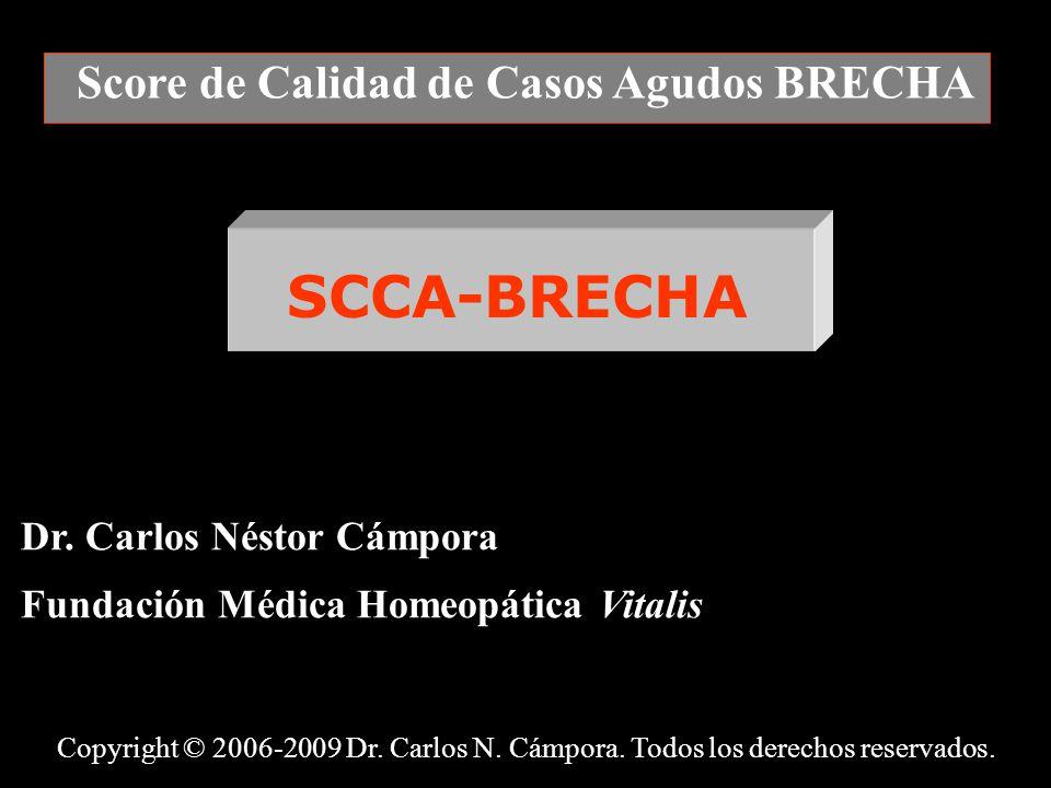Score de Calidad de Casos Agudos BRECHA Dr.