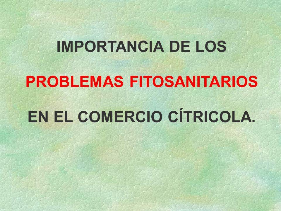 IMPORTANCIA DE LOS PROBLEMAS FITOSANITARIOS EN EL COMERCIO CÍTRICOLA.