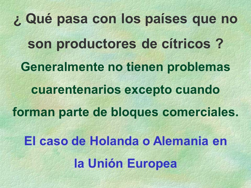 ¿ Qué pasa con los países que no son productores de cítricos .