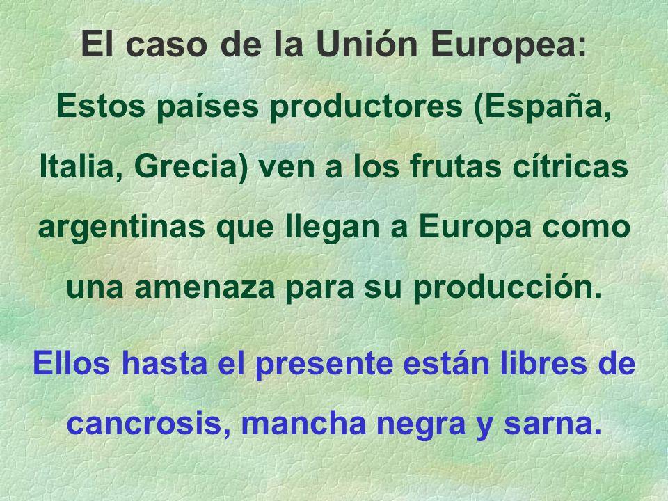 El caso de la Unión Europea: Estos países productores (España, Italia, Grecia) ven a los frutas cítricas argentinas que llegan a Europa como una amenaza para su producción.