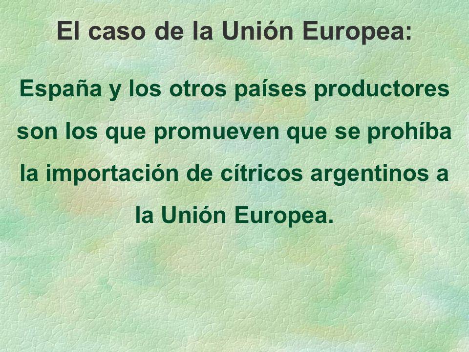 El caso de la Unión Europea: España y los otros países productores son los que promueven que se prohíba la importación de cítricos argentinos a la Unión Europea.