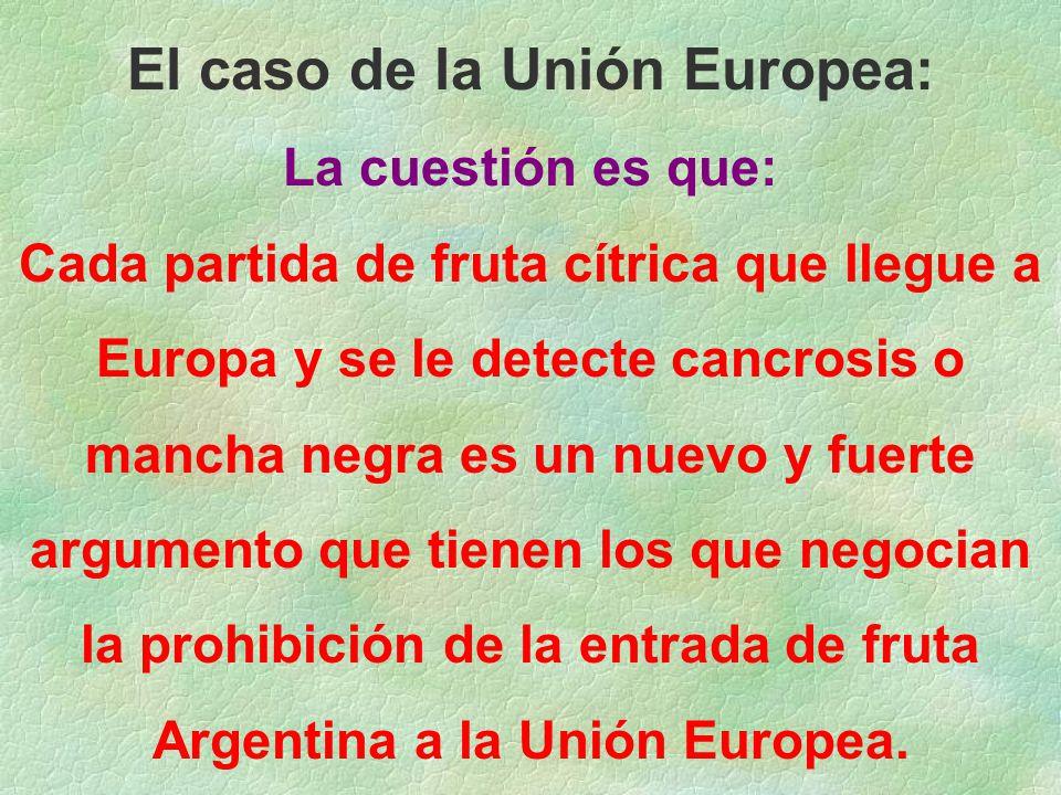 El caso de la Unión Europea: La cuestión es que: Cada partida de fruta cítrica que llegue a Europa y se le detecte cancrosis o mancha negra es un nuevo y fuerte argumento que tienen los que negocian la prohibición de la entrada de fruta Argentina a la Unión Europea.