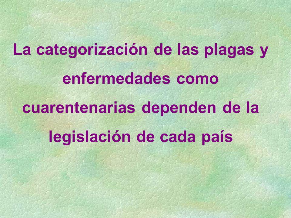 La categorización de las plagas y enfermedades como cuarentenarias dependen de la legislación de cada país