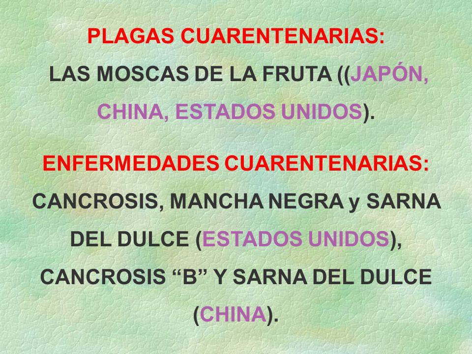 PLAGAS CUARENTENARIAS: LAS MOSCAS DE LA FRUTA ((JAPÓN, CHINA, ESTADOS UNIDOS).