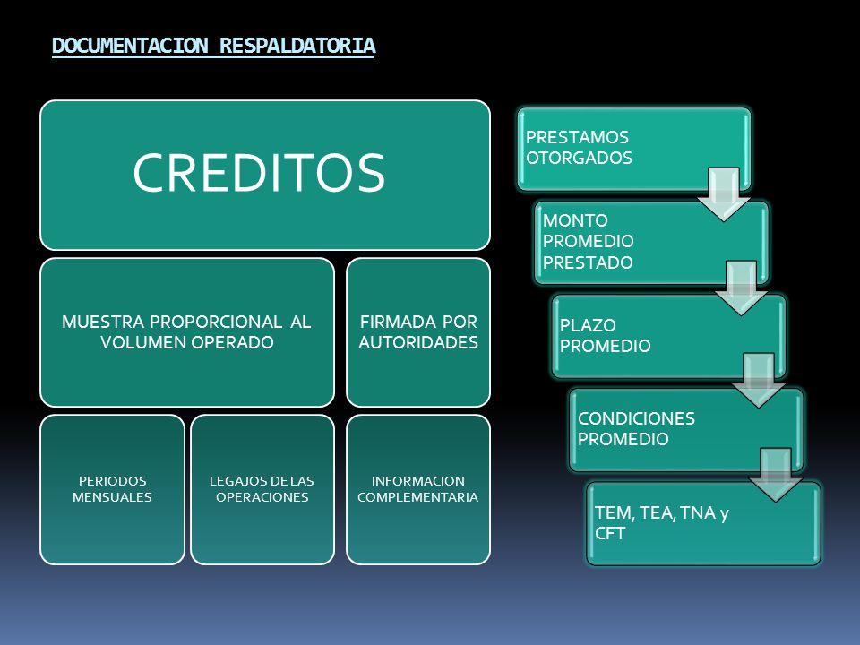 DOCUMENTACION RESPALDATORIA PRESTAMOS OTORGADOS MONTO PROMEDIO PRESTADO PLAZO PROMEDIO CONDICIONES PROMEDIO TEM, TEA, TNA y CFT CREDITOS MUESTRA PROPORCIONAL AL VOLUMEN OPERADO PERIODOS MENSUALES LEGAJOS DE LAS OPERACIONES FIRMADA POR AUTORIDADES INFORMACION COMPLEMENTARIA