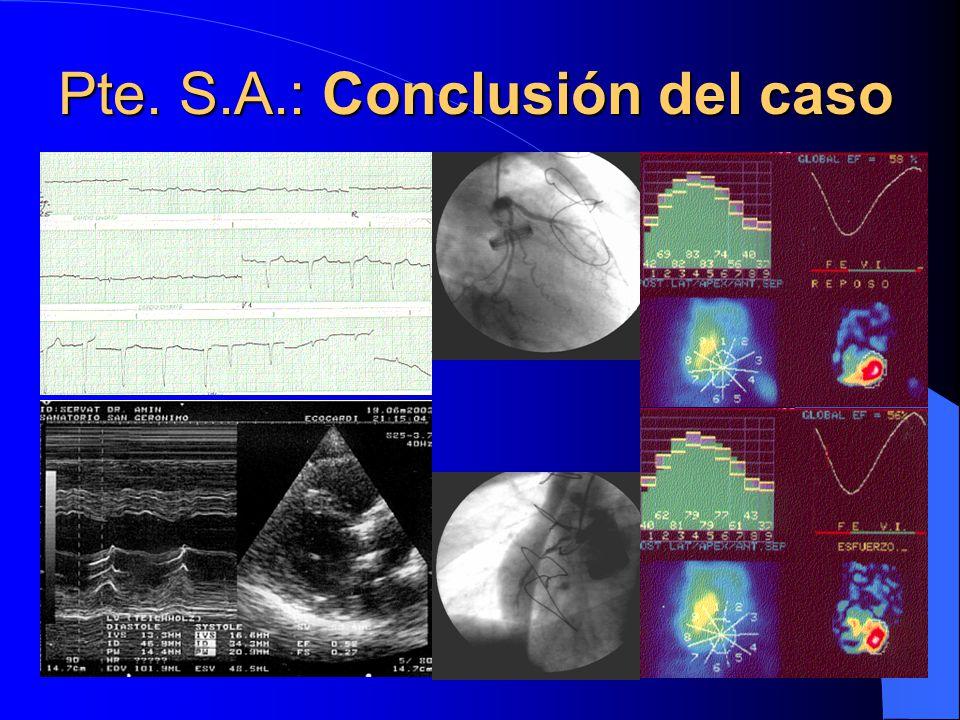 Pte. S.A.: Conclusión del caso