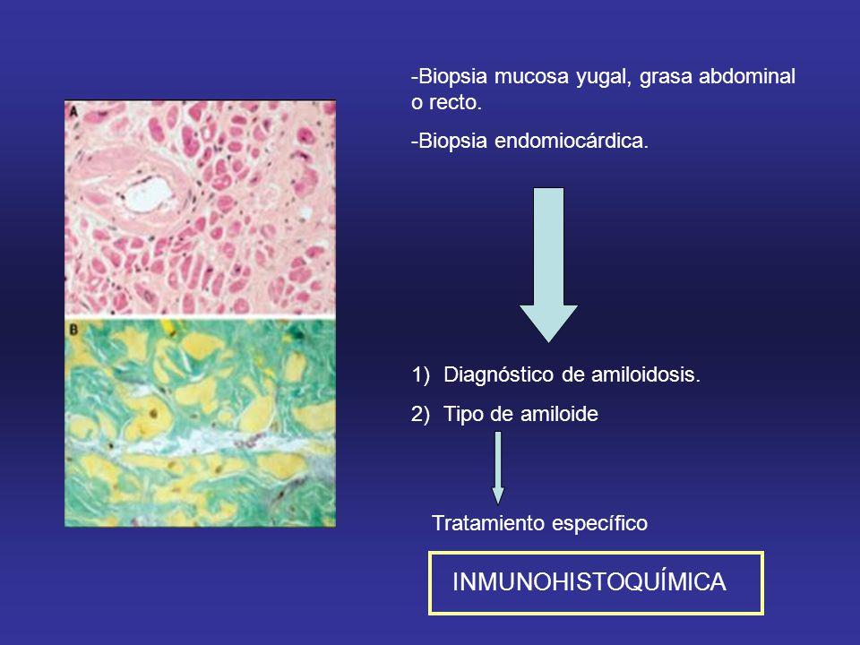 -Biopsia mucosa yugal, grasa abdominal o recto.-Biopsia endomiocárdica.