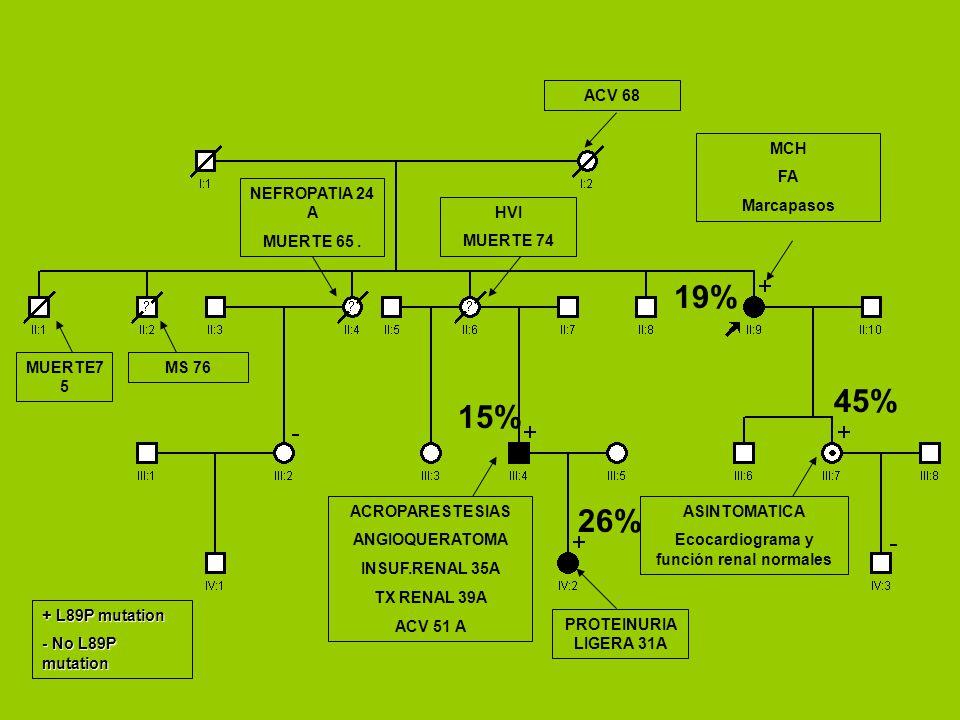 ASINTOMATICA Ecocardiograma y función renal normales MCH FA Marcapasos ACROPARESTESIAS ANGIOQUERATOMA INSUF.RENAL 35A TX RENAL 39A ACV 51 A PROTEINURIA LIGERA 31A + L89P mutation - No L89P mutation MS 76 NEFROPATIA 24 A MUERTE 65.
