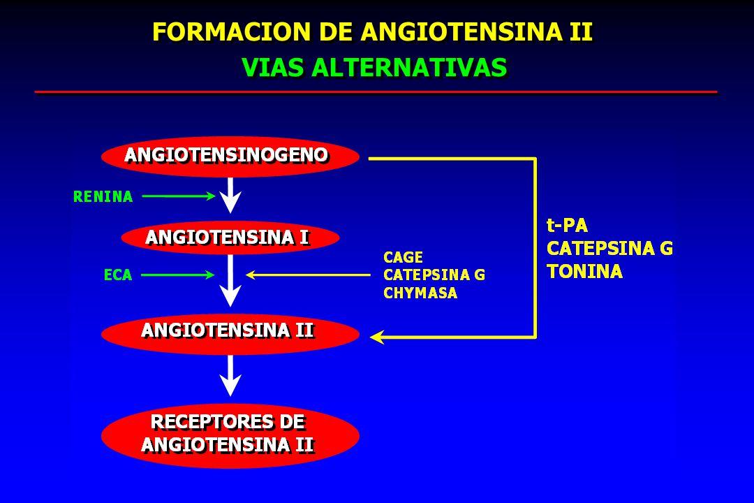 FORMACION DE ANGIOTENSINA II VIAS ALTERNATIVAS
