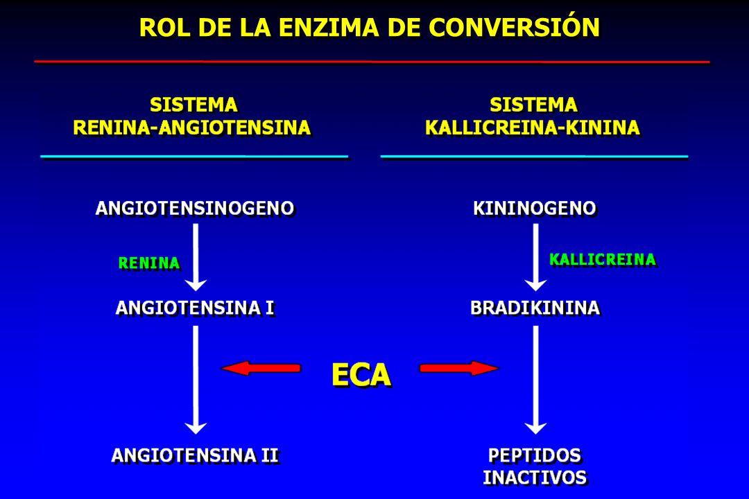ROL DE LA ENZIMA DE CONVERSIÓN