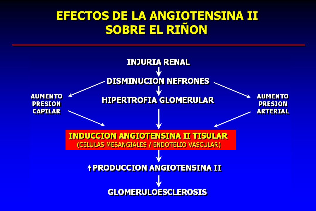 RENIN–ANGIOTENSIN–ALDOSTERONE SYSTEM BLOCKADE AND RENAL PROTECTION: ANGIOTENSIN-CONVERTING ENZYME INHIBITORS OR ANGIOTENSIN II RECEPTOR BLOCKERS.