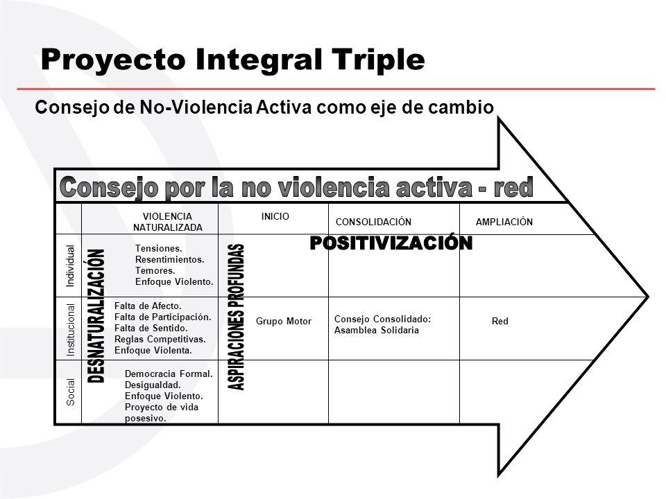 Proyecto Integral Triple Consejo de No-Violencia Activa como eje de cambio VIOLENCIA NATURALIZADA INICIO CONSOLIDACIÓNAMPLIACIÓN Tensiones. Resentimie