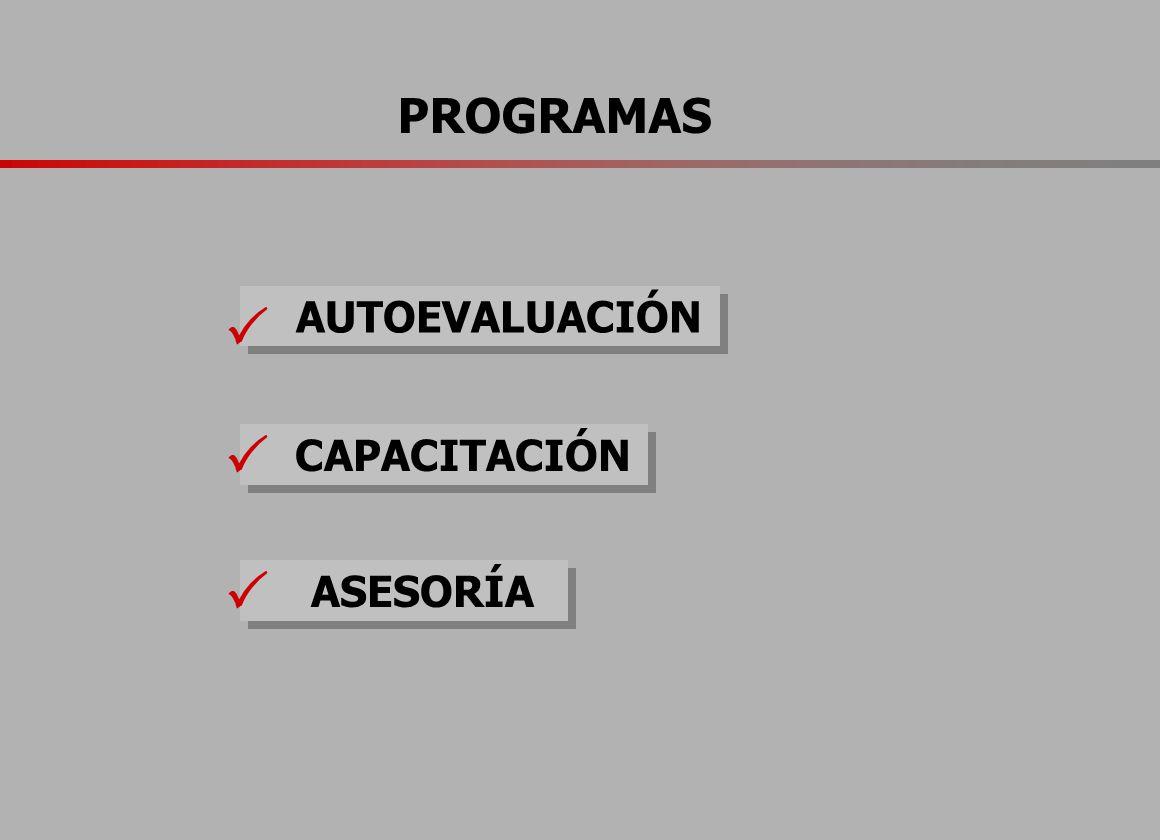PROGRAMAS AUTOEVALUACIÓN CAPACITACIÓN ASESORÍA