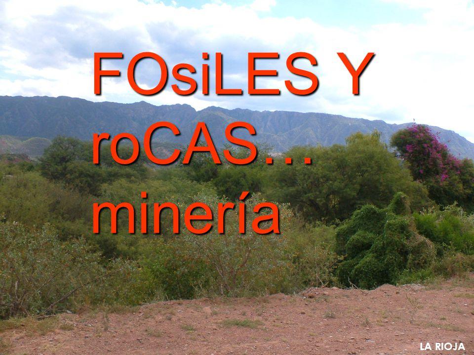 LA RIOJA FOsiLES Y roCAS… minería